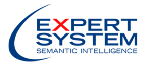 logo-expert-system